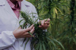 Grow-Room-Labcoat-Grower-Cannabis