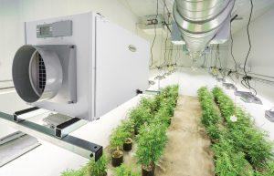 Anden-Hanging-Kit-Grow-Room-Dehumidifier