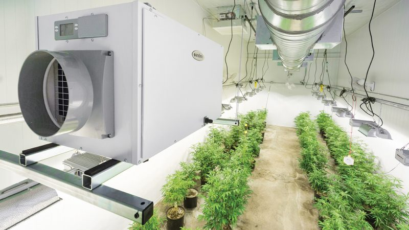 CFM and What It Means for Your Grow Room