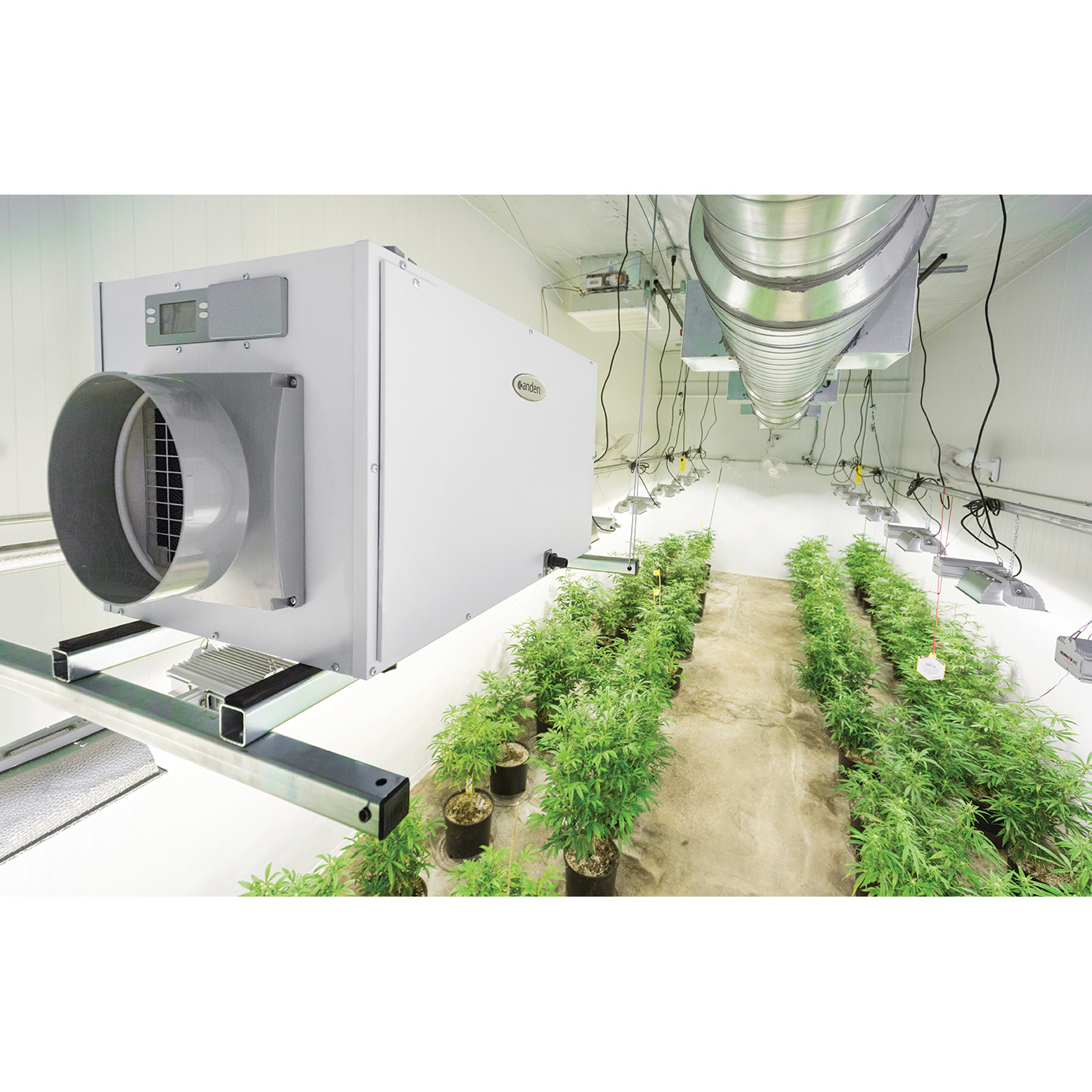 Grow room with hanging dehumidifier that has a specific cubic feet per minute capacity..
