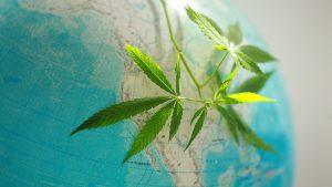 cannabis-legalization-world-map-usa
