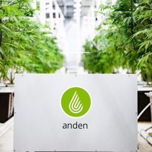 Anden-Dehumidifier-Grow Room