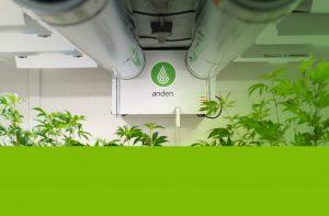 Anden-Dehumidifier-Ducted-Grow-Room