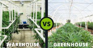 Grow Room - Cannabis - Warehouse - Greenhouse